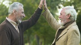 Cheerful friends laughing and giving high-five looking into camera, togetherness. Stock footage stock video footage