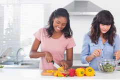 Cheerful friends preparing a salad together Stock Image