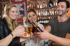 Cheerful friends toasting beer mugs and bottles. In bar Royalty Free Stock Photo