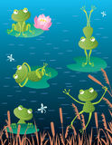 Cheerful frogs. Vector drawing of the merry frogs on the pond Royalty Free Stock Photos