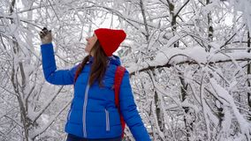 Woman is having fun - she is shaking the branches of a tree and snow is falling on her. Clear sunny frosty weather. Cheerful girl is having fun - she is shaking stock footage