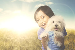 Cheerful girl with Maltese dog on the meadow. Image of cheerful girl looking at the camera while hugging her puppy in the meadow with sunlight in the background Stock Images