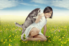 Cheerful girl playing with husky puppy Royalty Free Stock Photos