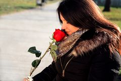 Cheerful girl smells red rose and enjoys. The scent Stock Photo