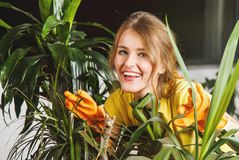 Girl Takes Care of Plants Stock Photo