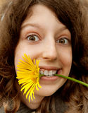 Cheerful girl and yellow camomile. Portrait of the cheerful girl with the big yellow camomile in a teeth Royalty Free Stock Image