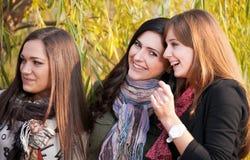 Cheerful girls in park Stock Photos