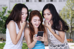 Cheerful girls reading message at school. Portrait of three teenage girls looks happy, reading message together on the mobile phone at school yard Stock Photography