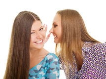 Cheerful girls speaking Stock Photo