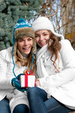 Cheerful girls twins, in the park. Two cheerful girls twins, in the park Stock Image