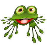 Cheerful Green Frog Royalty Free Stock Photography