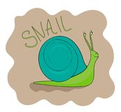 Cheerful green snail smiling Royalty Free Stock Photo
