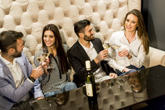 Cheerful group of young people toasting with white wine. Group of young people toasting with white wine Stock Photo