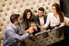 Cheerful group of young people toasting with white wine. View at cheerful group of young people toasting with white wine Stock Image