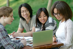 Cheerful group of young students sitting and studying Royalty Free Stock Photography