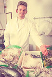 Cheerful guy selling chilled fish and seafood Stock Photography