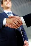 Cheerful handshaking Royalty Free Stock Images