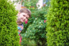 Cheerful happy boy peeking out from behind the leaves of trees royalty free stock images