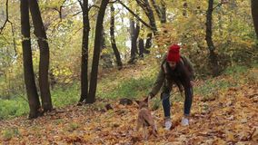Hipster girl and dog enjoying in autumn park stock video