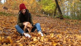 Beautiful girl stroking cute dog in autumn park stock video