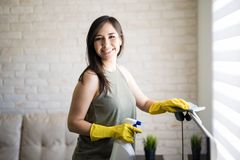 Cheerful housewife cleaning window blinds. Portrait of a graceful housewife looking at camera while cleaning window blinds Royalty Free Stock Images
