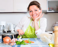 Cheerful housewife in modern kitchen Stock Photography