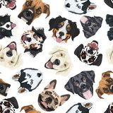 Cheerful Illustration with dogs. Seamless pattern with happy dogs. Playful illustration of different dog breeds. A great gift for dog owners and fans of dogs vector illustration