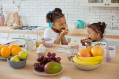 Cheerful international kids enjoying their healthy breakfast. Express positivity. Delighted girl eating sandwich and looking at her sister royalty free stock image