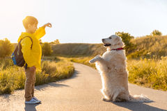 Cheerful kid playing with his pet outdoors Royalty Free Stock Photo