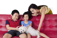 Cheerful kids playing puppy with mom Royalty Free Stock Image
