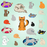 20 Cartoon Cats. 20 cheerful kittens, vector illustration, EPS 10 Royalty Free Stock Image