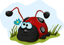 Cheerful ladybug for children. Vector Royalty Free Stock Photo