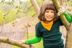 Cheerful little boy climb tree Stock Photos