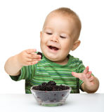 Cheerful little boy is eating blackberry Royalty Free Stock Image
