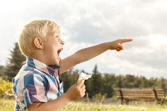 Cheerful little boy eating ice cream Royalty Free Stock Photo