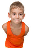 Cheerful little boy. A cheerful little boy stands against the white background Royalty Free Stock Images