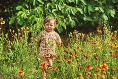 girl on a summer walk in the park royalty free stock images