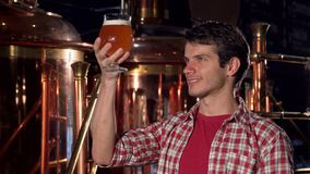 Cheerful male brewer smiling to the camera, examining beer in a glass stock photos