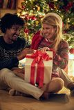 Cheerful male and female exchanging Christmas presents royalty free stock photo