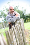 Cheerful man in countryside leaning on fence Stock Photography