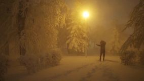 Cheerful man dances in winter park at night stock video