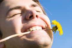Cheerful man with dandelion portrait. On blue sky background Stock Photography