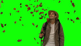 Cheerful man standing under leaves falling on green screen stock video