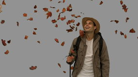 Cheerful man standing under leaves falling on grey screen Royalty Free Stock Images
