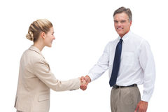 Cheerful mature businessman shaking hands with his coworker Royalty Free Stock Photos