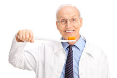 Cheerful mature dentist holding a huge toothbrush Royalty Free Stock Image