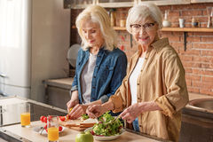 Cheerful mature ladies caring of their health. Portrait of happy old women preparing healthy salad from vegetables. She is looking at camera and smiling. Her royalty free stock photo