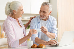 Cheerful mature loving couple family using laptop holding credit card. Picture of cheerful mature loving couple family standing at the kitchen using laptop Stock Image