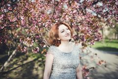 Cheerful middle aged Armenian woman in an elegant dress under the blooming sakura tree stock photography