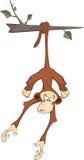 Cheerful monkey. Cartoon Stock Images